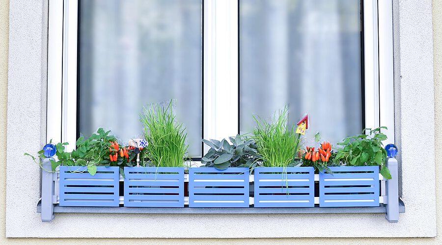 masu Blumenkastenhalterung für Fensterbänke ohne Bohren oder Sägen