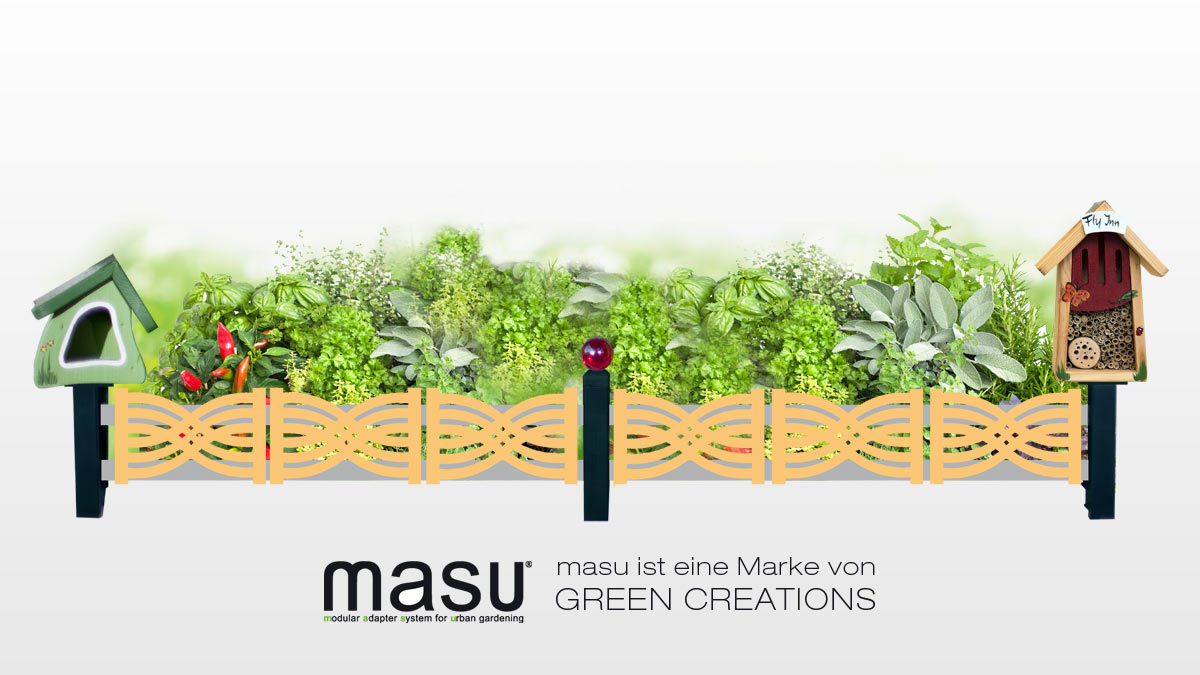 Masu makes window sills greener and more beautiful