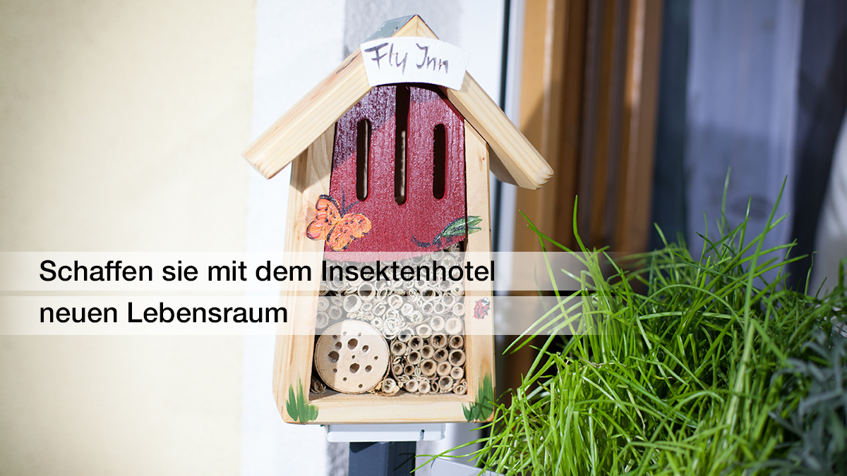 masu insect hotel from Green Creations creates new living space for bees