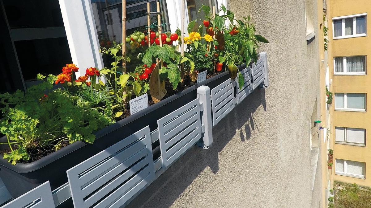 Mit masu kannst du den Duft deiner Kräuter und frisches Gemüse auf jeder Fensterbank genießen